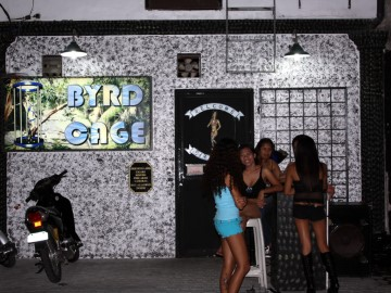 3985fff404e THE BYRD CAGE BAR - Nightlife and Entertainment in Balibago